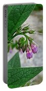 Comfrey Portable Battery Charger