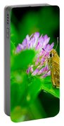 Common Banded Skipper Portable Battery Charger