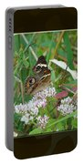 Common Buckeye Butterfly - Junonia Coenia Portable Battery Charger