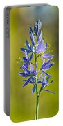Common Camas Portable Battery Charger