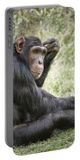 Common Chimpanzee  Pan Troglodytes Portable Battery Charger