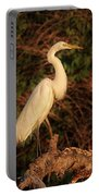 Common Egret Of Palestine Lake Portable Battery Charger