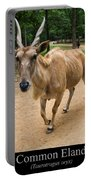 Common Eland Portable Battery Charger by Chris Flees