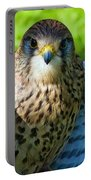 Common Kestrel  Portable Battery Charger