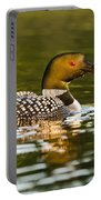 Common Loon Pictures 145 Portable Battery Charger