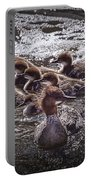 Common Merganser With Chicks Portable Battery Charger