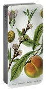Common Peace Persica Vulgaris Portable Battery Charger