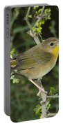 Common Yellowthroat Hen Portable Battery Charger