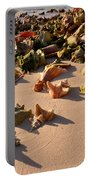 Conch Collection Portable Battery Charger