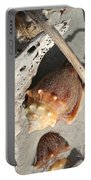 Conchs With Driftwood I Portable Battery Charger