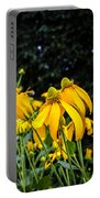 Coneflowers Echinacea Yellow Painted Portable Battery Charger
