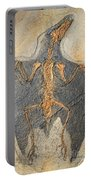 Confuciusornis Fossil Portable Battery Charger