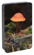 Conical Wax Cap Mushroom Portable Battery Charger