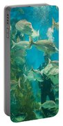 Cool Aquarium Portable Battery Charger by Ray Warren