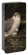 Coopers Hawk Pictures 135 Portable Battery Charger