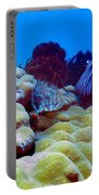 Corals Underwater Portable Battery Charger