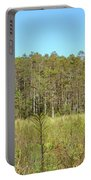 Corkscrew Swamp 1 Portable Battery Charger
