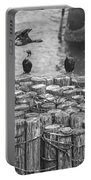 Cormorant Landing Black And White Portable Battery Charger