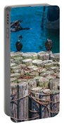 Cormorant Landing Portable Battery Charger