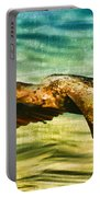 Cormorant On The Move Portable Battery Charger