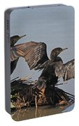 Cormorants Sunbathing Portable Battery Charger