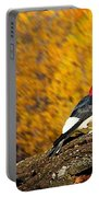 Corn Fed Woodpecker Portable Battery Charger