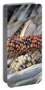 Corn Of Many Colors Portable Battery Charger by Caitlyn  Grasso