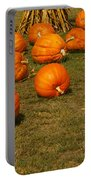 Corn Plants With Pumpkins In A Field Portable Battery Charger