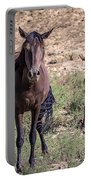 Cortez Colorado Mustangs Portable Battery Charger