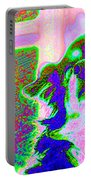 Cosmic Consciousness Portable Battery Charger