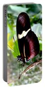 Costa Rican False Postman Butterfly Portable Battery Charger