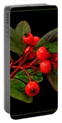 Cotoneaster Portable Battery Charger