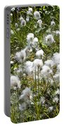 Cotton Grass On Homestead Trail In Homer-ak- Portable Battery Charger