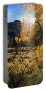 Cottonwoods In Buckhorn Wash 4055 Portable Battery Charger