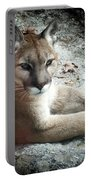 Cougar Country Portable Battery Charger