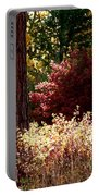 Country Color 28 Portable Battery Charger