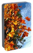 Country Color 30 Portable Battery Charger