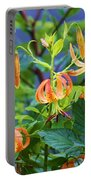 Country Flowers Portable Battery Charger