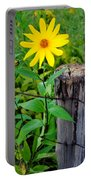 Country Living Portable Battery Charger