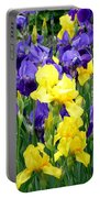 Country Road Irises  Portable Battery Charger
