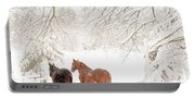 Country Snow Portable Battery Charger