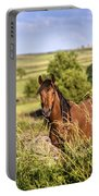 Countryside Horse Portable Battery Charger
