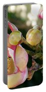 Couroupita Guianensis - Cannonball Tree Flowers Portable Battery Charger