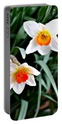 Covenant Daffodils Portable Battery Charger