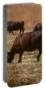Cow And Calf Grazing Portable Battery Charger