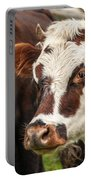 Cow Closeup Portable Battery Charger