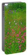 Cow Clover And Ox-eye Daisies On Campobello I Portable Battery Charger