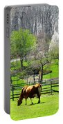 Cow Grazing In Pasture In Spring Portable Battery Charger
