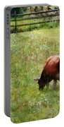 Cow Grazing In Pasture Portable Battery Charger