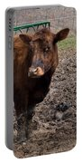 Cows  Portable Battery Charger